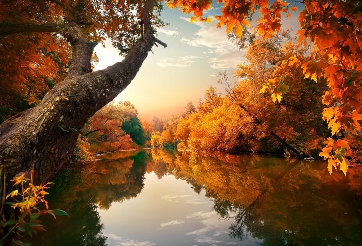 Schönen Herbstanfang, meineLieben!